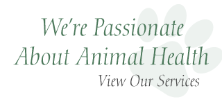 We're passionate about animal health | View Our Services